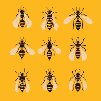 Conjunto de big hornet em fundo amarelo