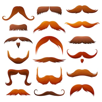 Conjunto de bigodes