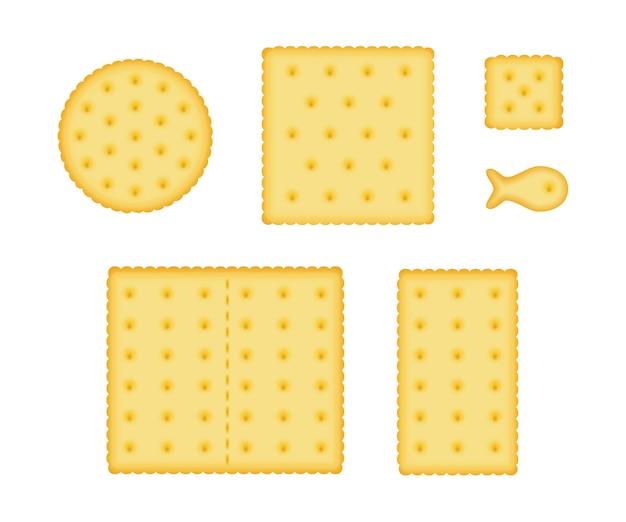 Conjunto de biscoitos cracker.