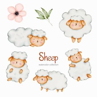 Conjunto de boneca de ovelha em aquarela