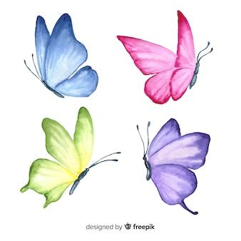 Conjunto de borboleta desenhada de mão