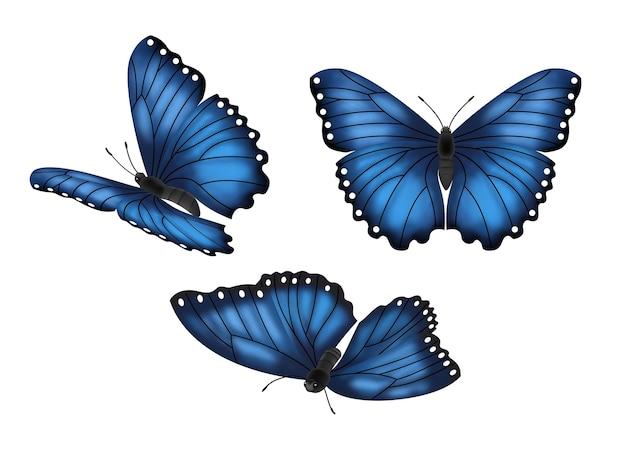 Conjunto de borboletas azuis