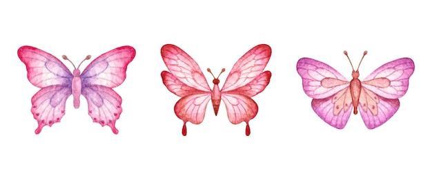 Conjunto de borboletas coloridas desenhadas à mão em aquarela