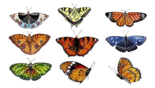 Conjunto de borboletas coloridas em aquarela desenhadas à mão no fundo branco