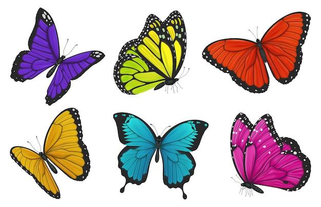 Conjunto de borboletas coloridas isoladas em branco
