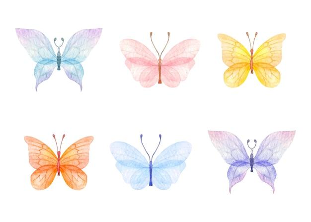 Conjunto de borboletas coloridas para ocasiões especiais