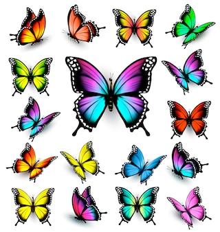 Conjunto de borboletas coloridas. vetor.