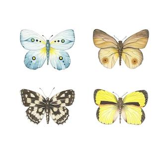 Conjunto de borboletas em aquarela isolado