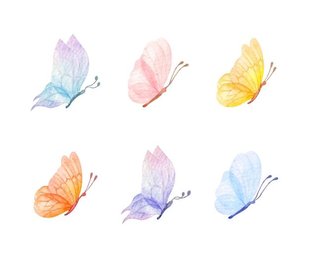 Conjunto de borboletas voadoras para ocasiões especiais