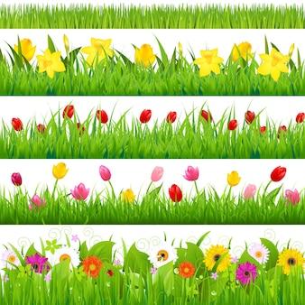 Conjunto de bordas de flores, ilustração