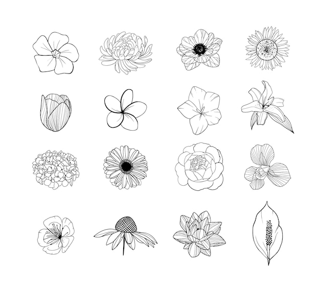 Conjunto de botões de flores desenhados à mão