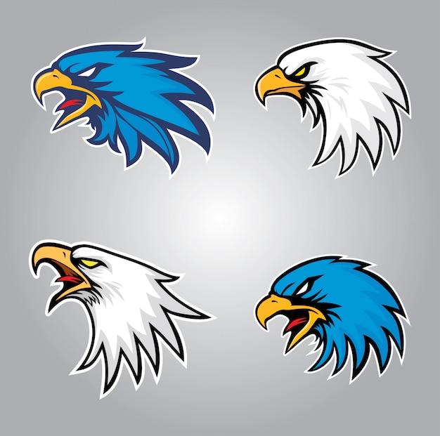 Conjunto de cabeça de águia
