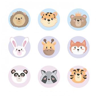 Conjunto de cabeças de animais selvagens fofos