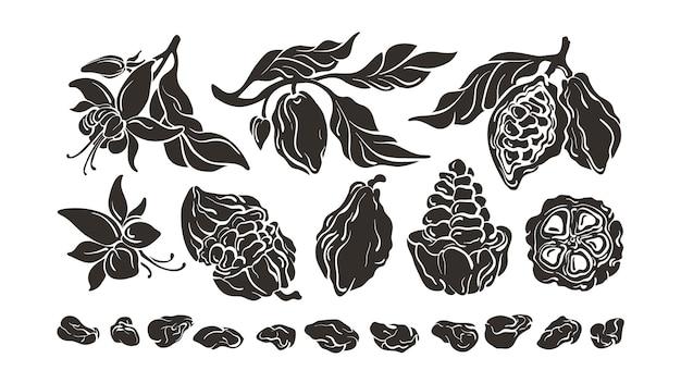 Conjunto de cacau. ingrediente de chocolate. desenho de feijão, fruta, folhas