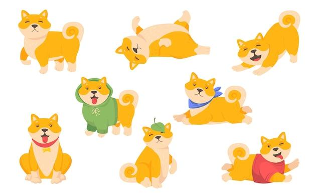 Conjunto de cachorrinho akita engraçado