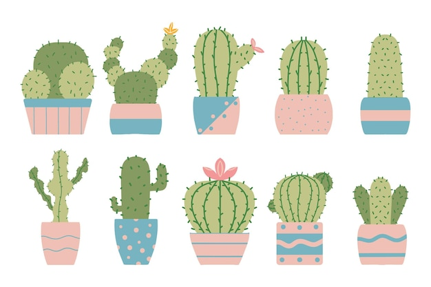 Conjunto de cactos em vasos desenhados à mão conjunto de plantas de casa cactos em flor