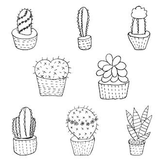 Conjunto de cactus mão desenhada e suculenta