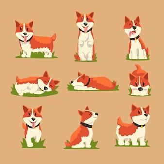 Conjunto de cães corgi ruivos de desenho animado