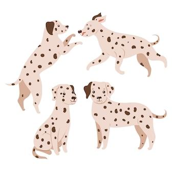 Conjunto de cães dálmatas isolado no fundo branco
