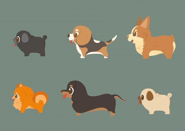 Conjunto de cães engraçados de raça pura
