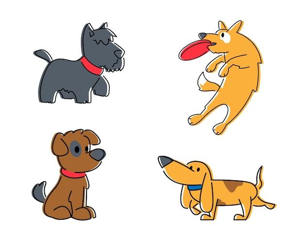 Conjunto de cães fofos de diferentes raças isoladas no fundo branco
