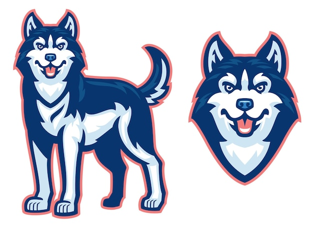 Conjunto de cão husky