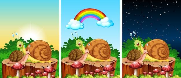 Conjunto de caracóis vivendo nas cenas do jardim em tempos diferentes