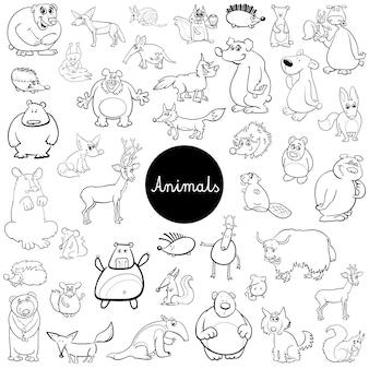 Conjunto de caracteres de animais selvagens de desenhos animados livro de cor