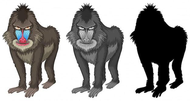 Conjunto de caracteres de babuíno de mandril