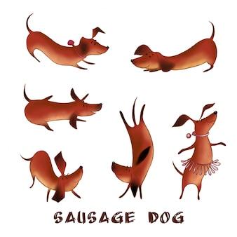 Conjunto de caracteres de cães salsicha bonitinho