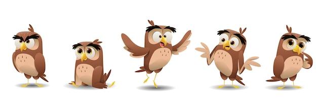 Conjunto de caracteres de corujas bonito dos desenhos animados.