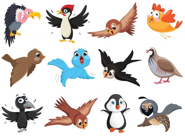 Conjunto de caracteres de pássaro engraçado ff