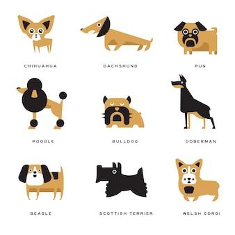 Conjunto de caracteres de raças de cães diferentes de ilustrações e letras de raça em inglês