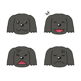 Conjunto de caras de cachorro preto mostrando emoções diferentes