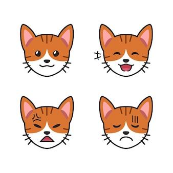 Conjunto de caras de gato malhado mostrando emoções diferentes