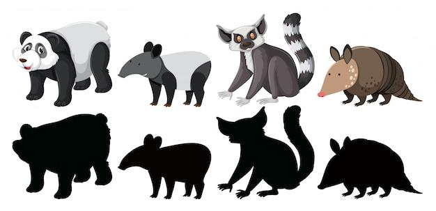 Conjunto de caráter de animais exóticos