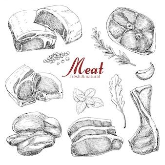 Conjunto de carne de mão desenhada