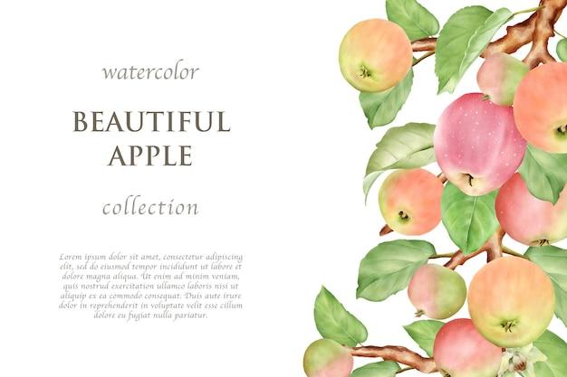 Conjunto de cartão de maçã desenhado à mão em aquarela