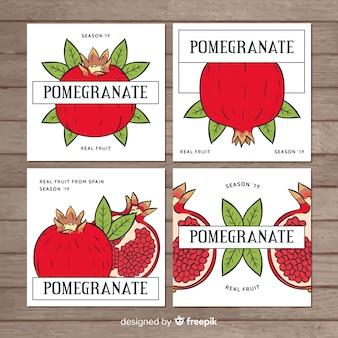 Conjunto de cartão de romã desenhada de mão