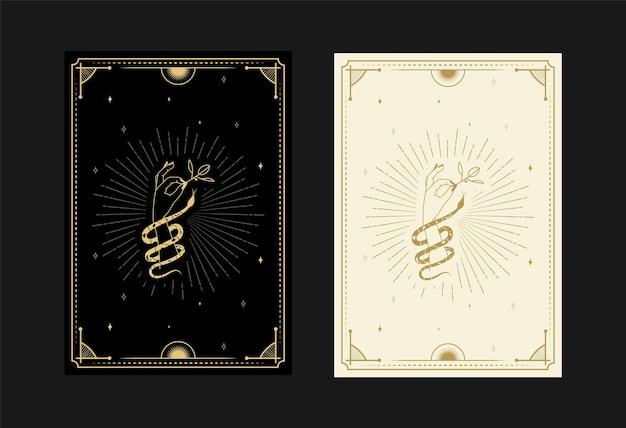 Conjunto de cartas de tarô místicas símbolos alquímicos doodle gravura de estrelas, flores, cobras e cristais