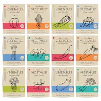 Conjunto de cartazes de legumes mão desenhada.