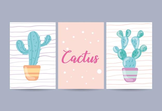 Conjunto de cartões com ilustração de cacto