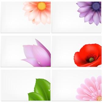 Conjunto de cartões com ilustração de flores