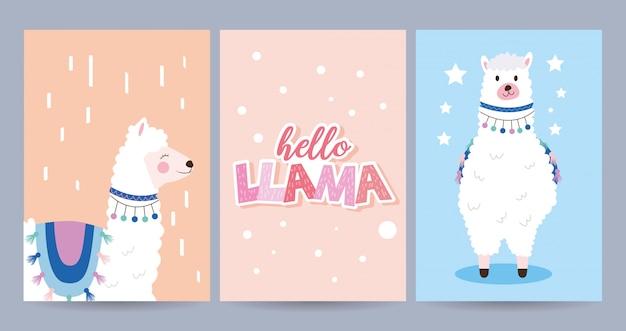 Conjunto de cartões com lhama