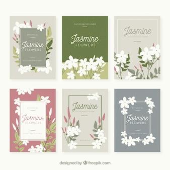 Conjunto de cartões de jasmim com lindas flores