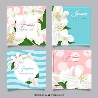 Conjunto de cartões de jasmim em estilo realista
