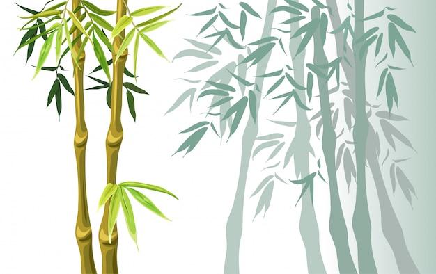 Conjunto de caules de bambu verde e folhas.