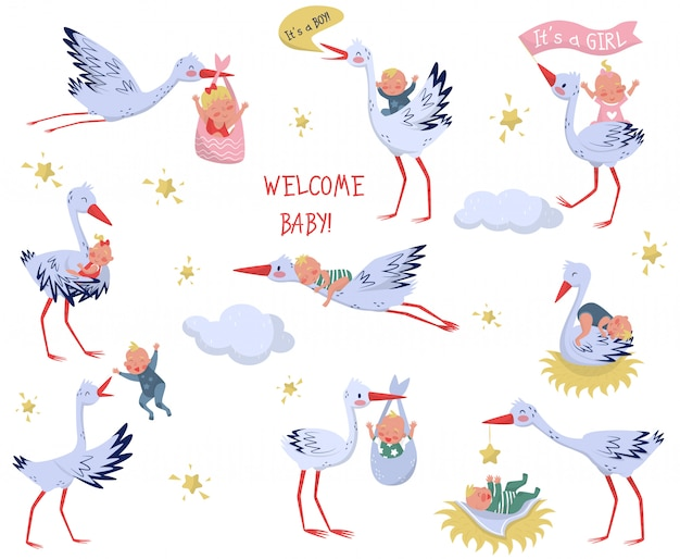 Conjunto de cegonhas brancas com bebês. pássaros adoráveis e filhos recém-nascidos. elementos para crianças livro ou cartão de felicitações