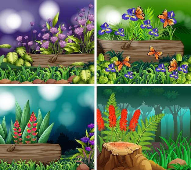 Conjunto de cena de fundo com tema da natureza