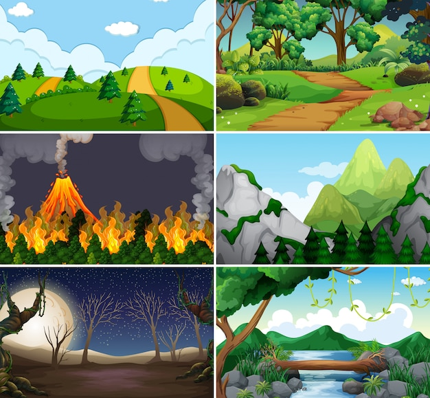 Conjunto de cena diferente da natureza